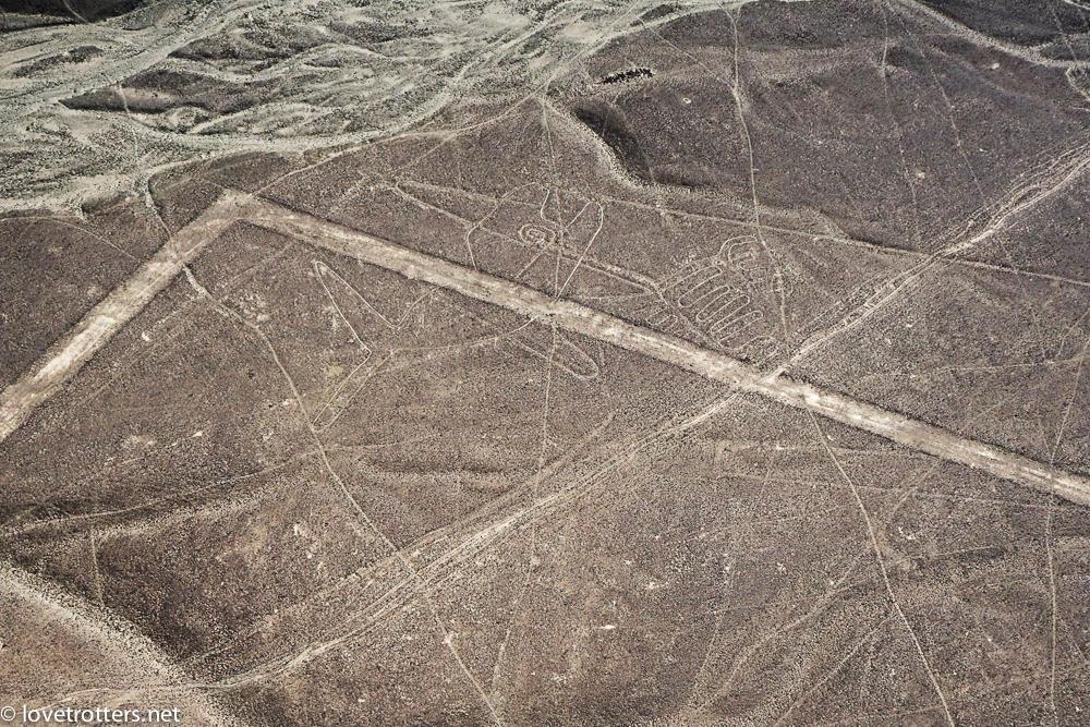 nazca-07981