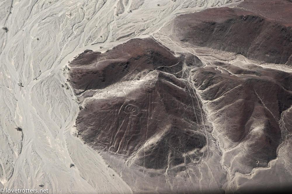 nazca-07988