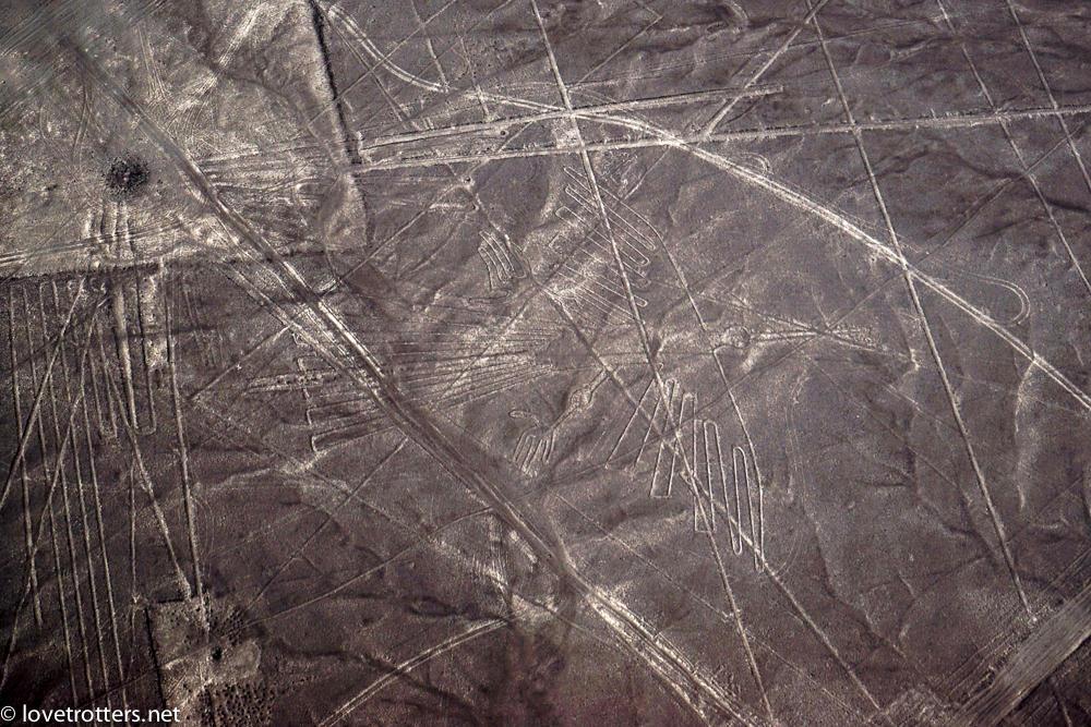 nazca-08008