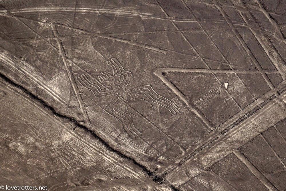 nazca-08010
