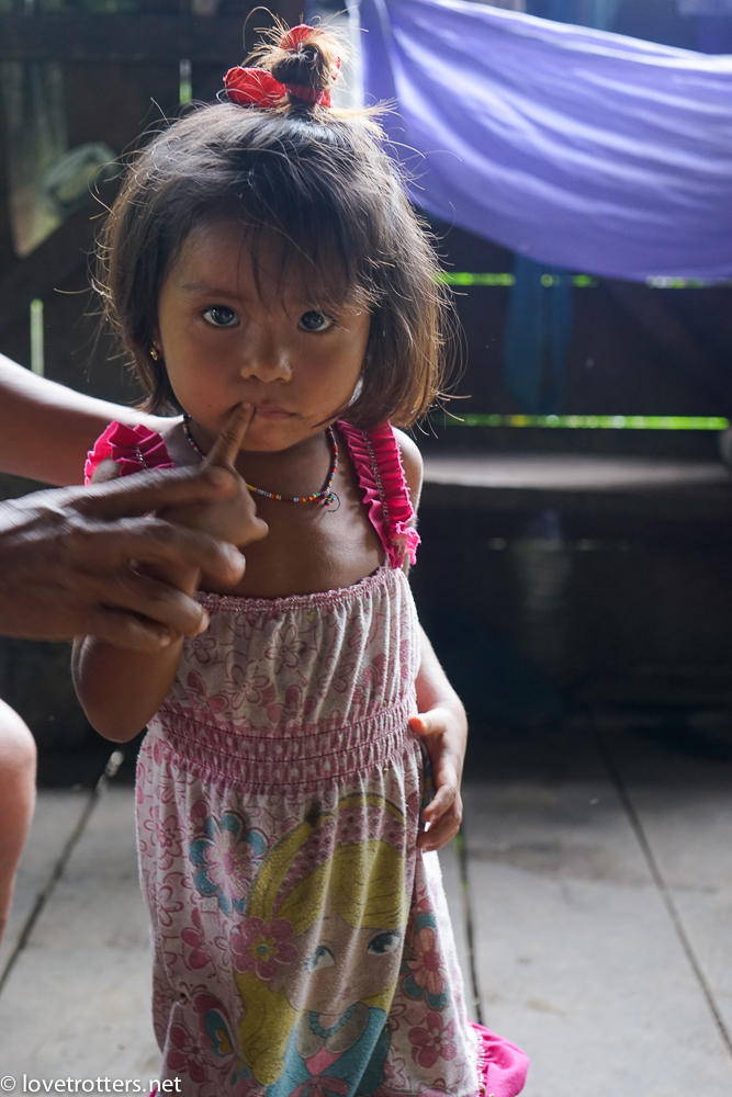 Asa wanchu amazonie equatorienne