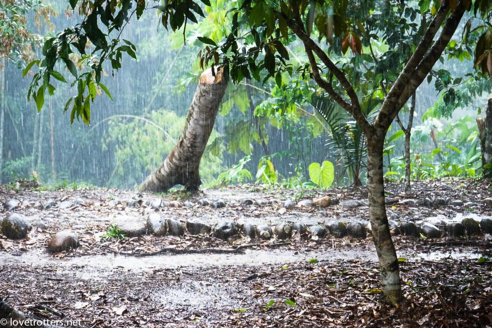 orage en amazonie