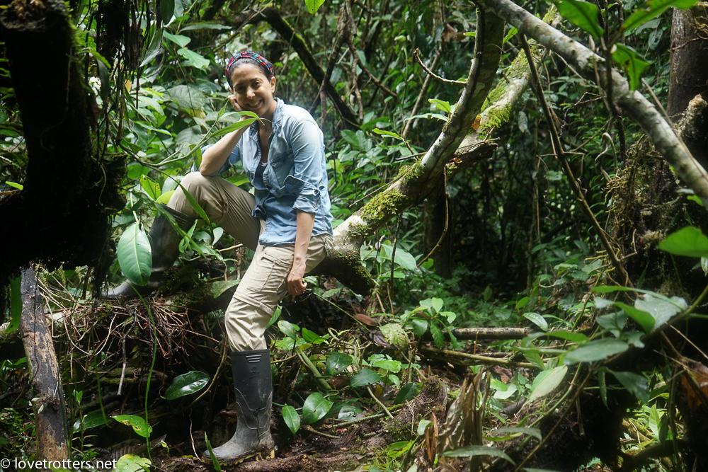 au beau milieu de l'amazonie