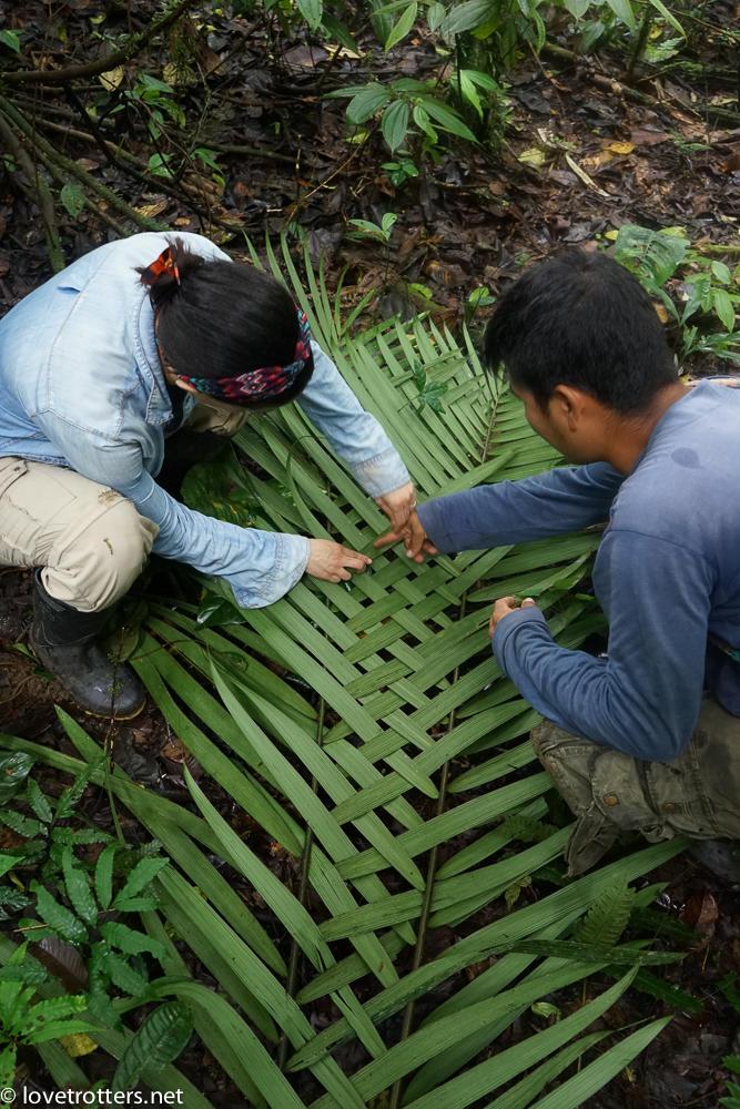 la faune utile de l'amazonie