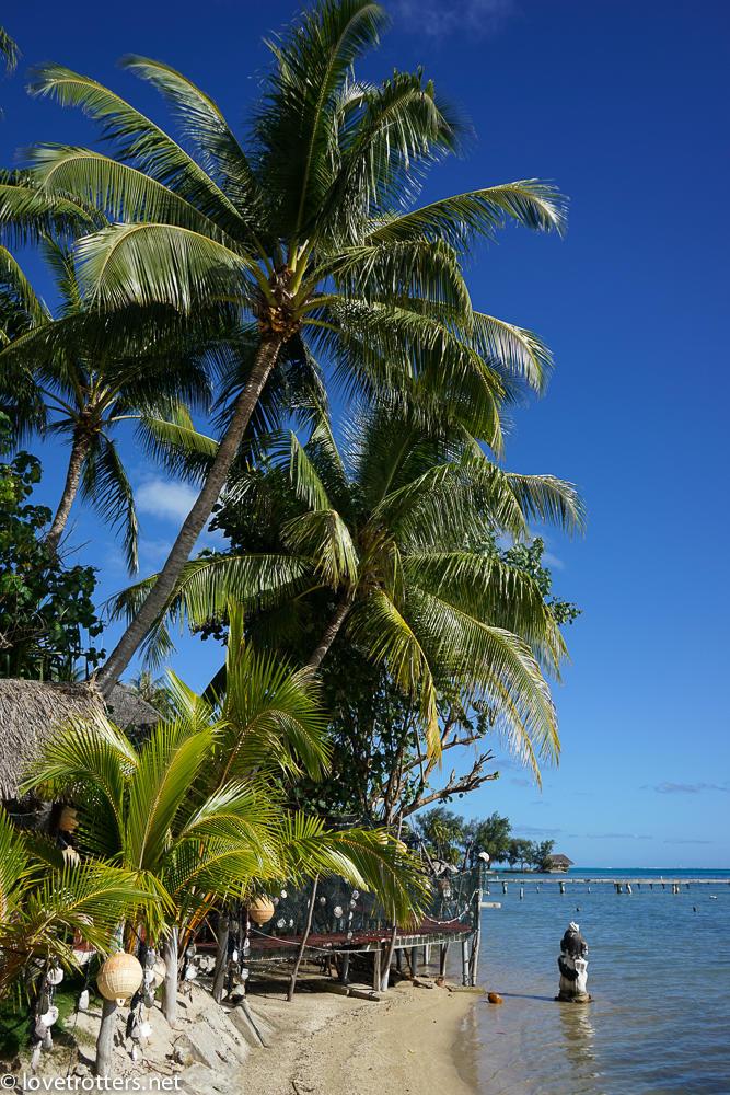 Polynesie francaise bora bora ferme de perles