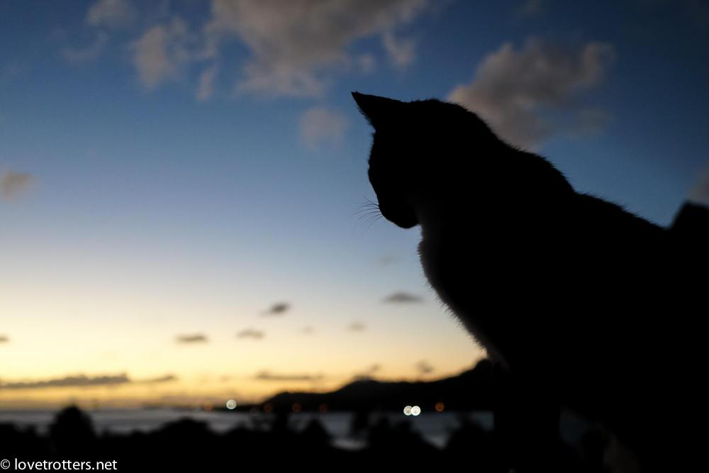 polynesie-francaise-bora-bora-02836
