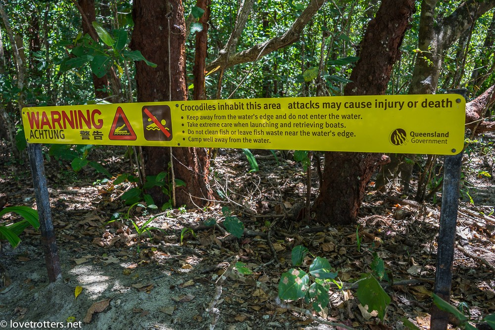 australia-queensland-daintree-national-park-09256