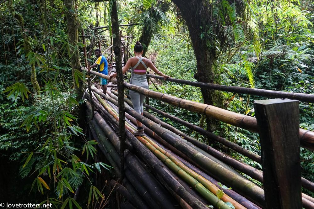 pont de bamboo en route vers la grotte du millenium cave
