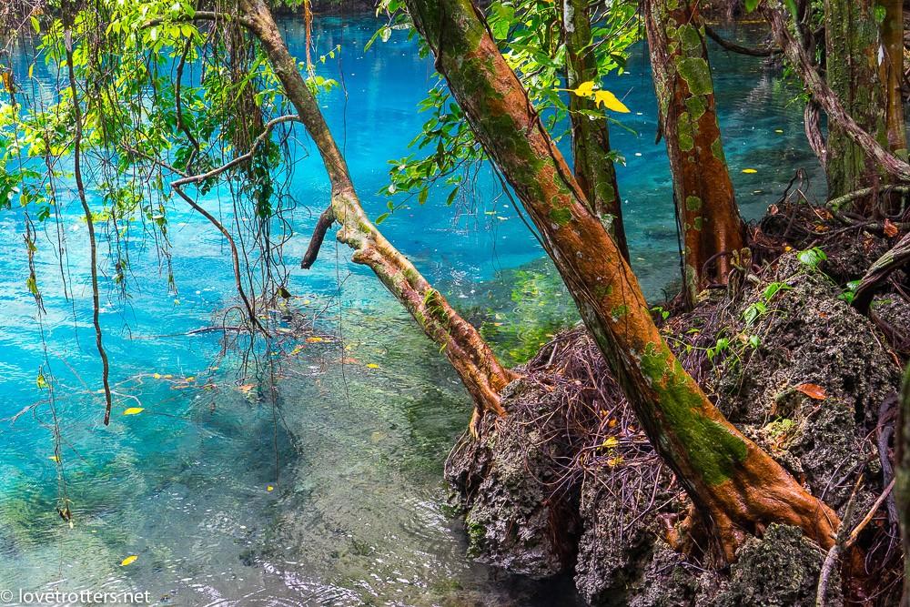 vanuatu-santo-riri-riri-blue-hole-07908
