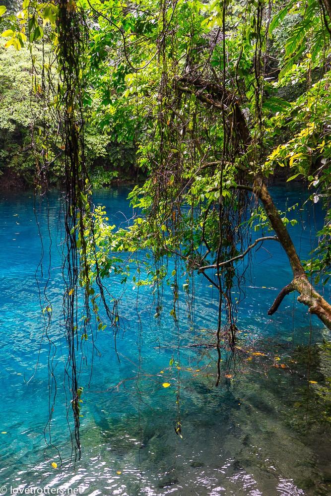vanuatu-santo-riri-riri-blue-hole-07911