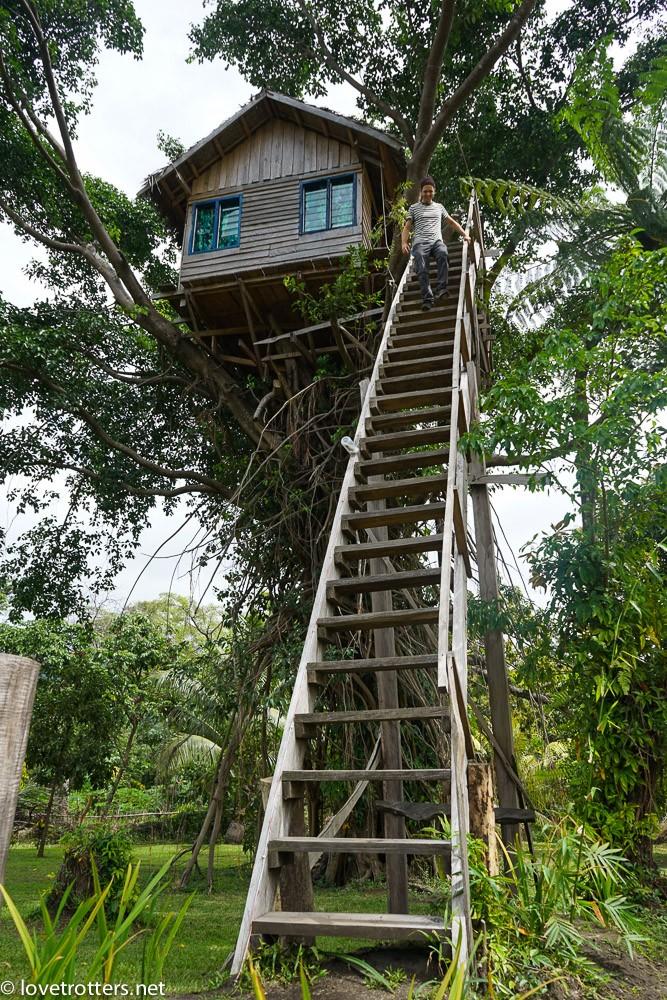 vanuatu-tanna-tree-house-volcano-06380