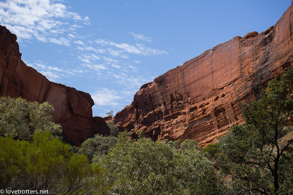 australia-northern-territory-kings-canyon-09609