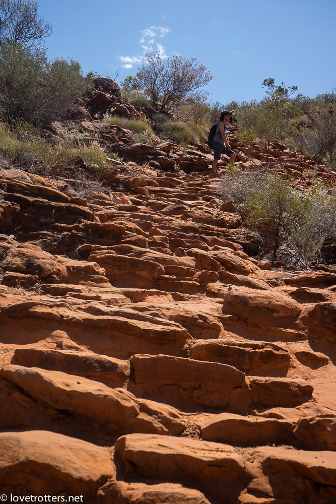 australia-northern-territory-kings-canyon-09635