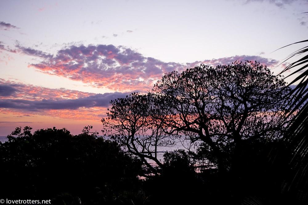 vanuatu-tanna-rocky-ridge-06705