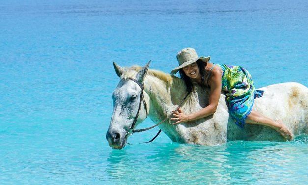 Nager à cru à dos de cheval sur une plage déserte au Vanuatu