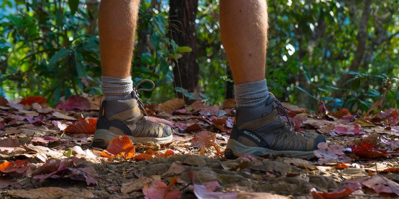 Trekking 101: le guide du parfait petit randonneur