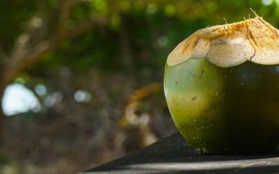 L'île de Pelé au Vanuatu: un secret bien gardé