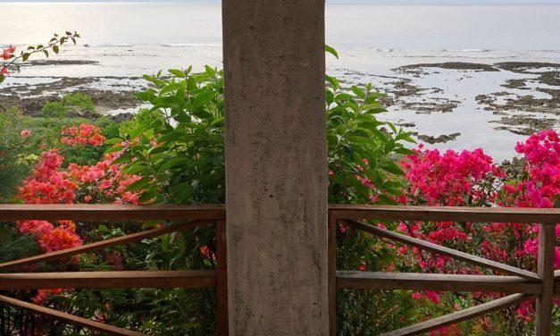 Séjour chez l'habitant sur les plages noires de Tanna au Vanuatu