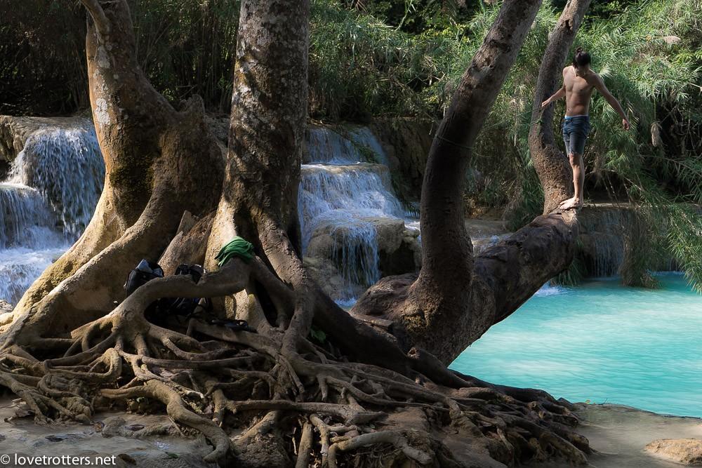 laos-luang-prabang-kuang-si-waterfall-01380