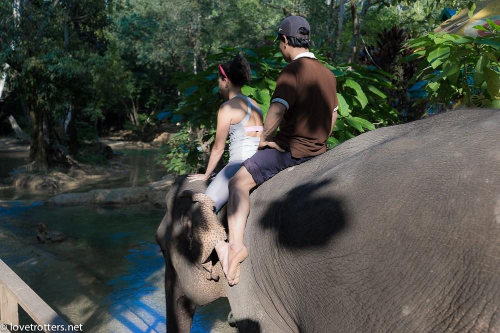 thailand-luang-prabang-tad-sae-waterfall-01848