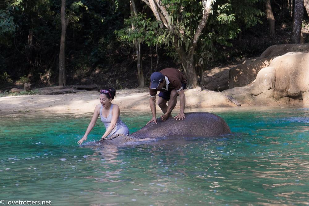 thailand-luang-prabang-tad-sae-waterfall-01858