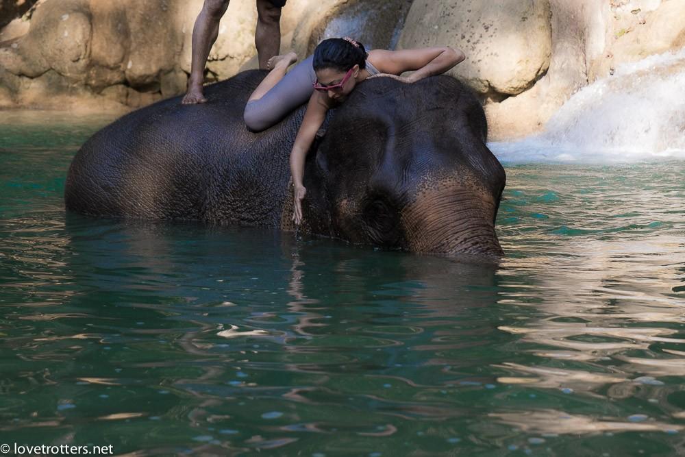 thailand-luang-prabang-tad-sae-waterfall-01920