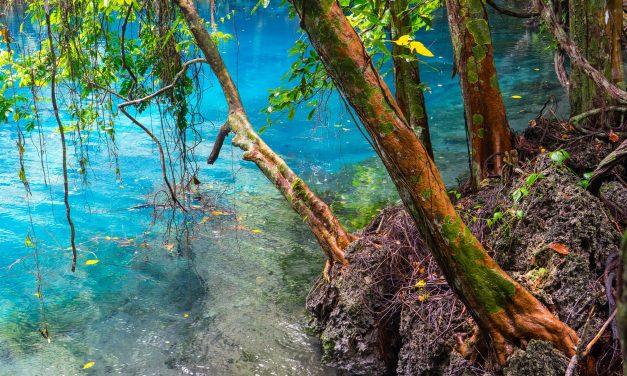 «Fifty Shades of Blue» au Vanuatu