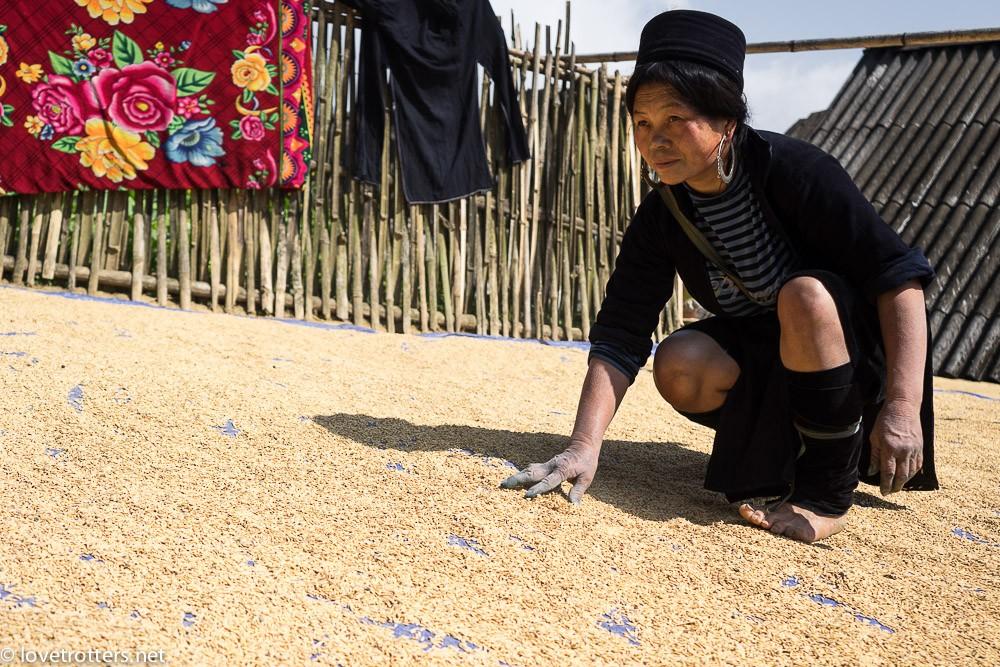 Vietnam-Sapa-02898