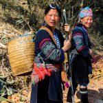 Trek à Sapa : Dans la brume avec les minorités ethniques du Vietnam