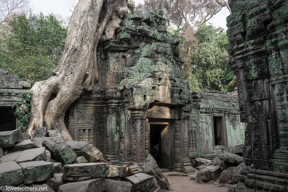cambodia-siem-reap-ta-phrom-06100