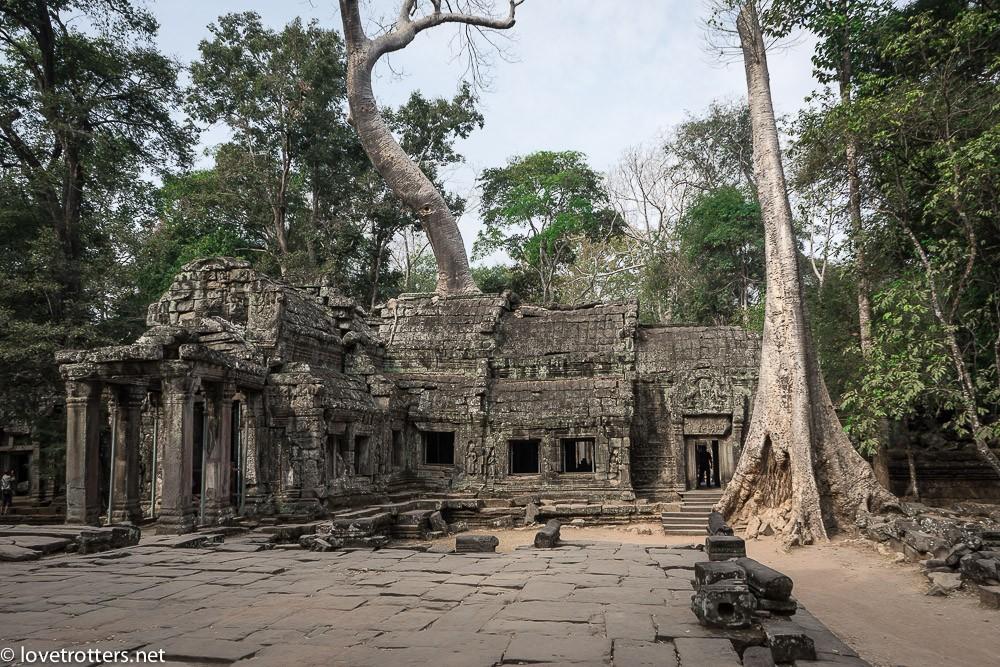 cambodia-siem-reap-ta-phrom-06250