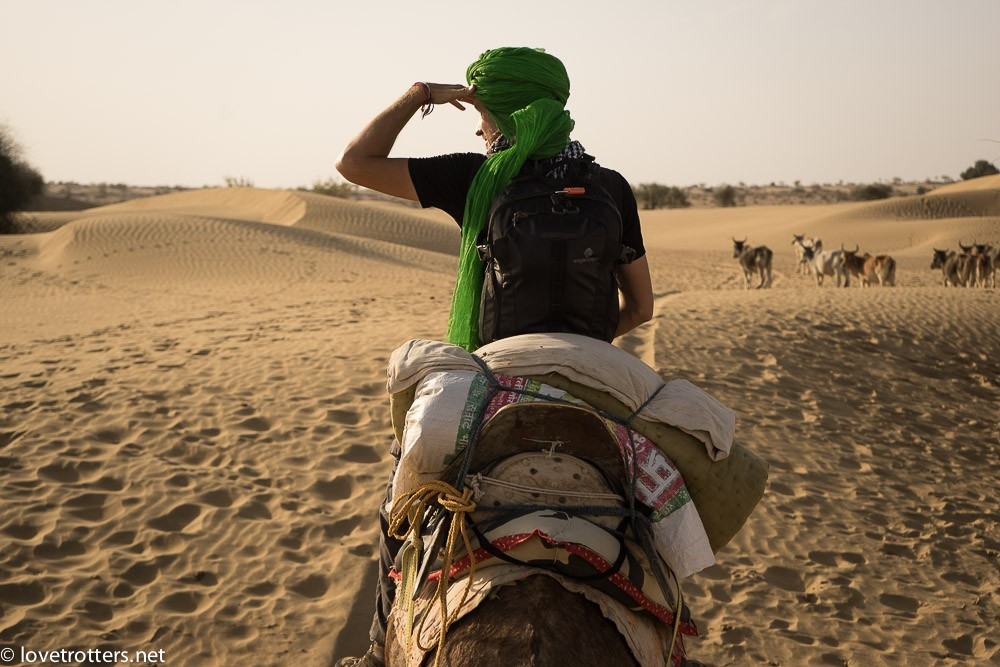 india-jaisalmer-camel-safari-00111