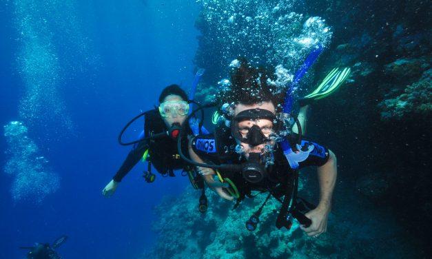 Plonger la «Great Barrier Reef»: du rêve à la réalité