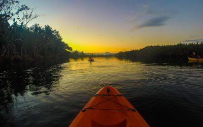 Kayak nocturne pour assister au bal des lucioles à Bohol