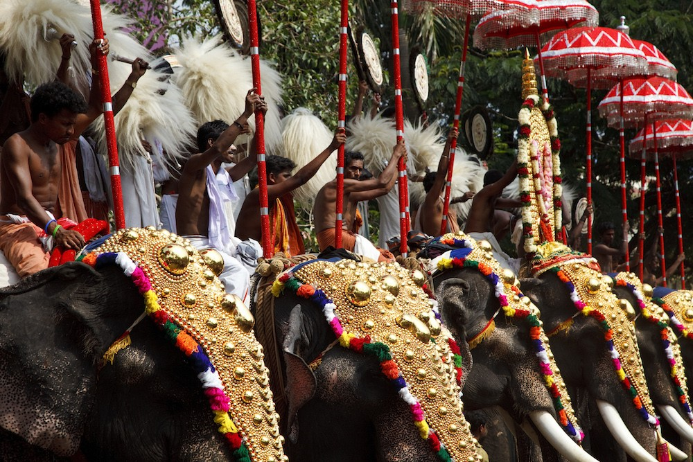 Men riding elephants decorated with gold plated caparisons, at the annual Thrissur Pooram Festival.