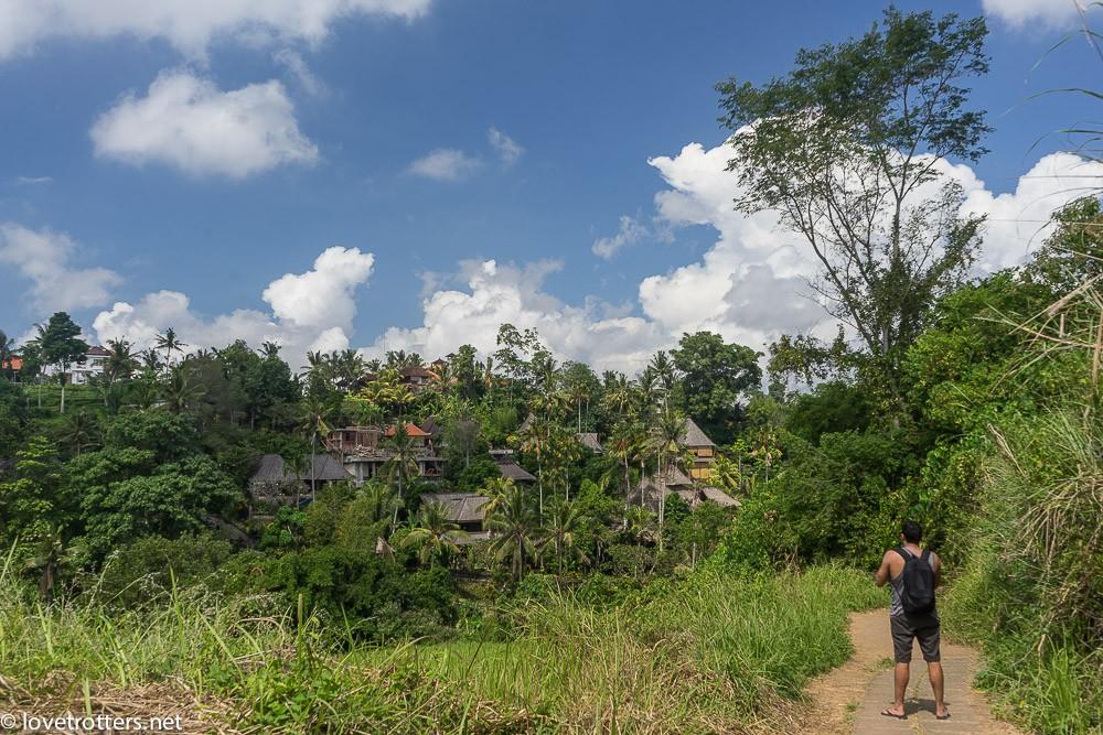 indonesia-bali-ubud-08646