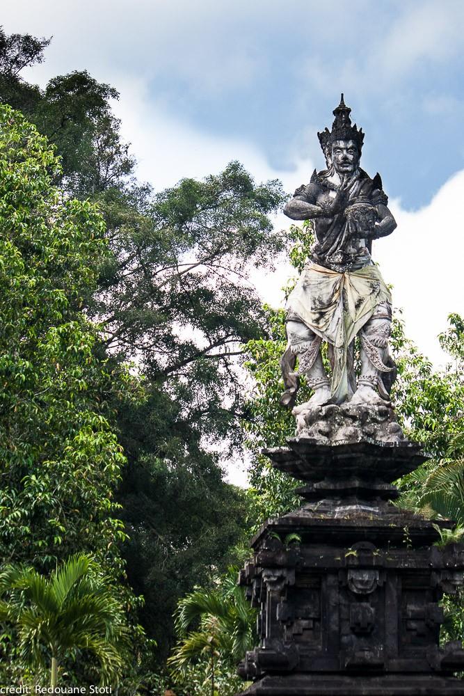 indonesia-bali-ubud-8000