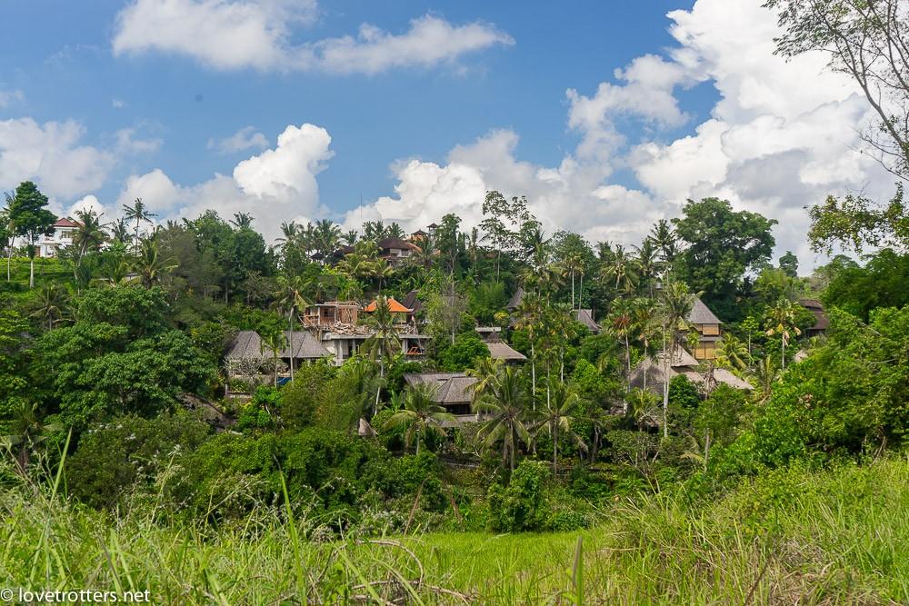 indonésie-bali-ubud-08642