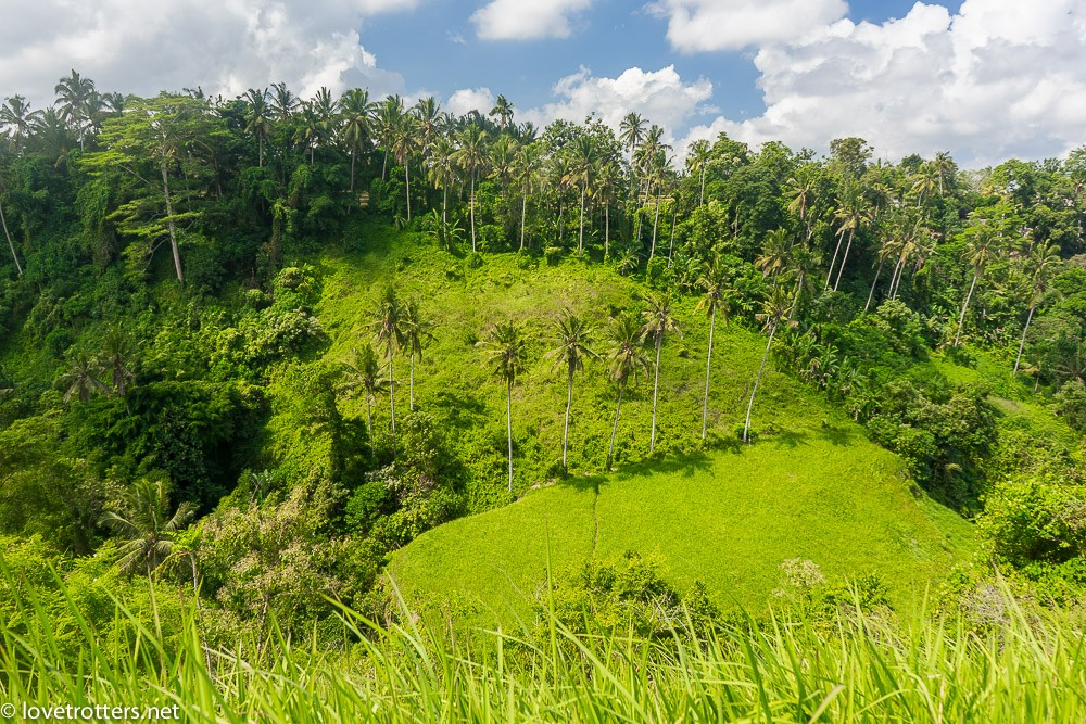 indonésie-bali-ubud-08653