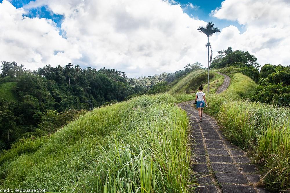 indonesia-bali-ubud-