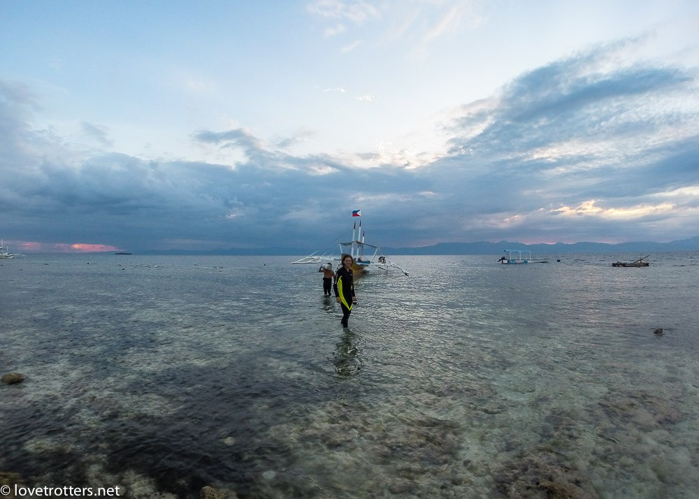 philippines-moalboal-diving-4550