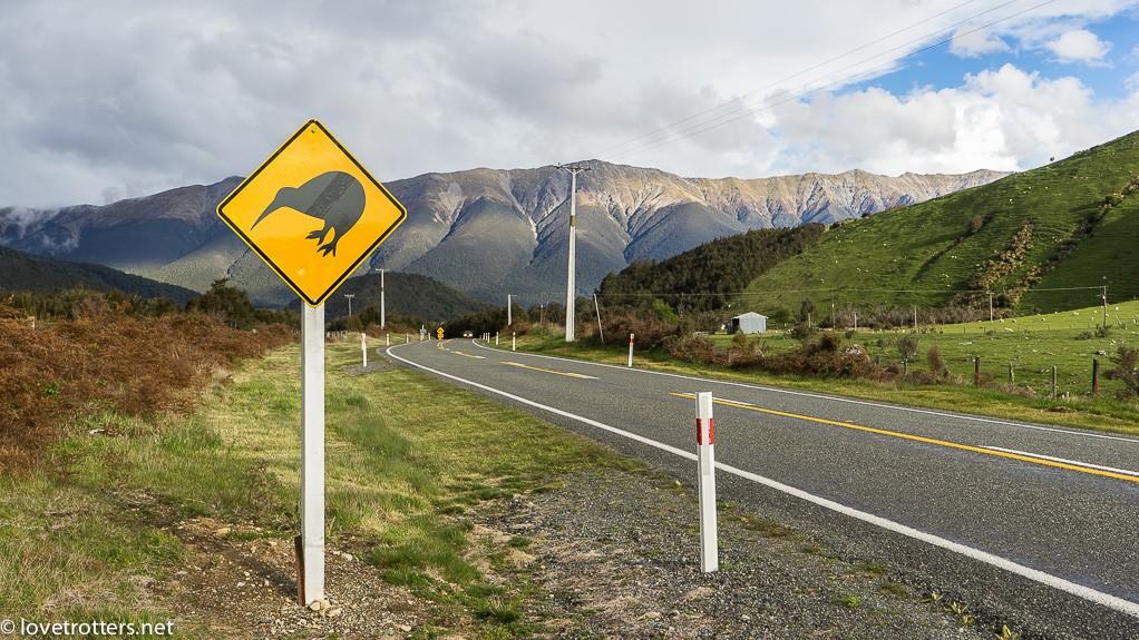12-nouvelle-zelande-kiwi-lovetrotters-03824