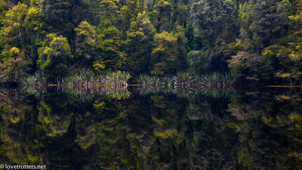19-nouvelle-zelande-lake-matheson-lovetrotters-04964