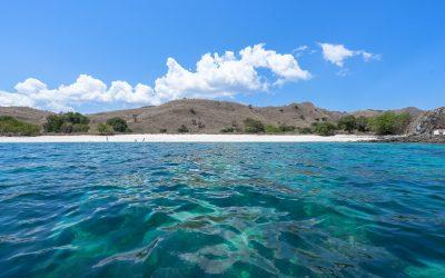 Comment faire une croisière plongée à Komodo à petit budget