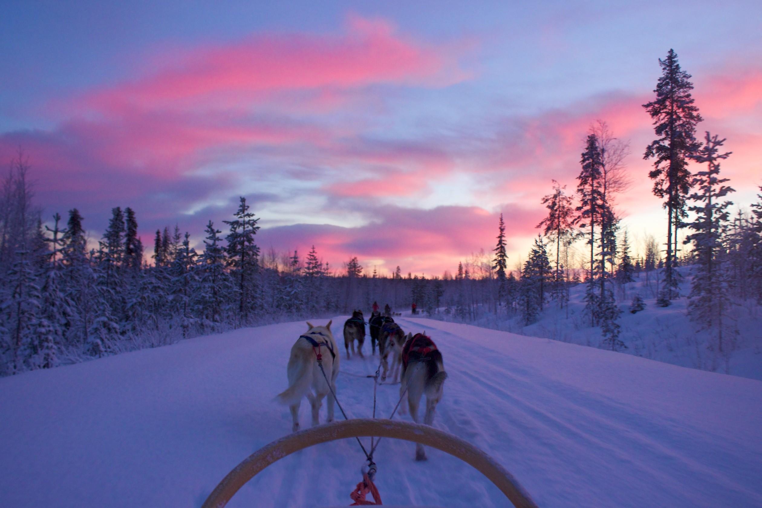 Polar-Night-Sledding-004
