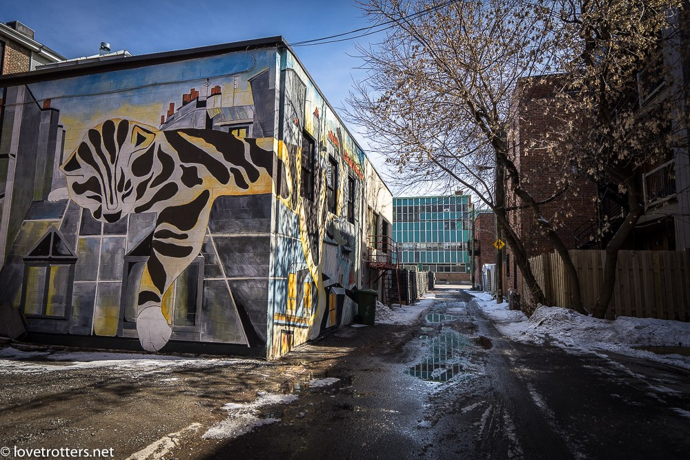 canada-montreal-street-art-00186