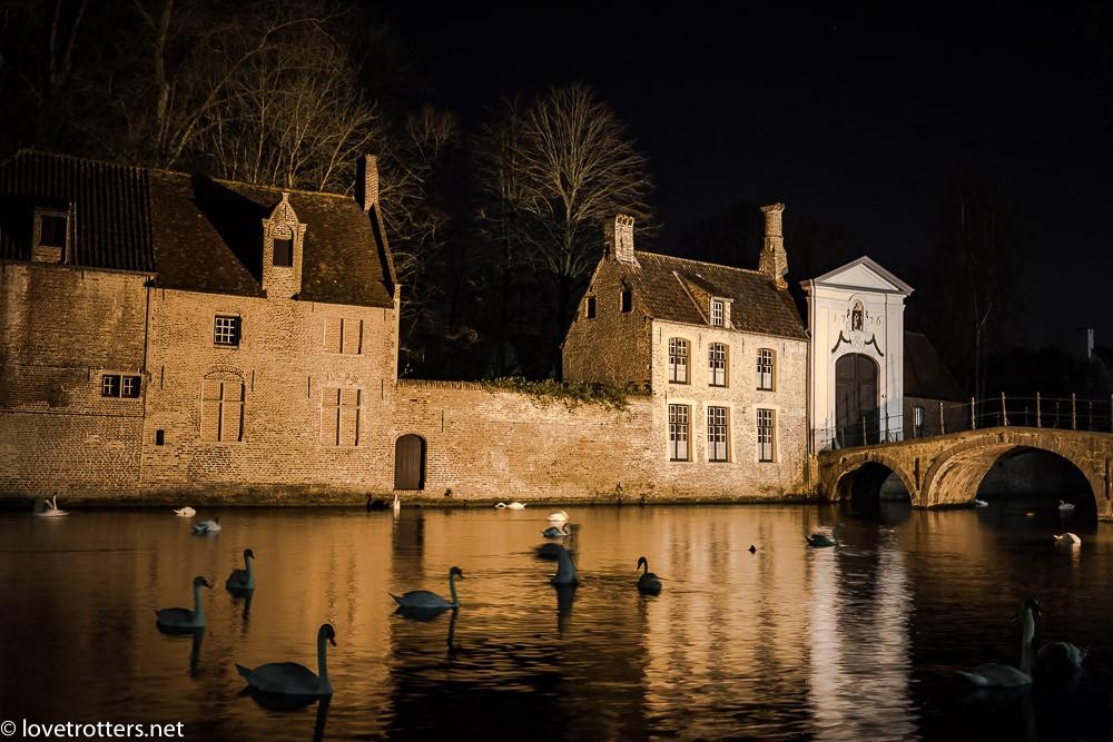 Belgique-Bruges-by-night-01356