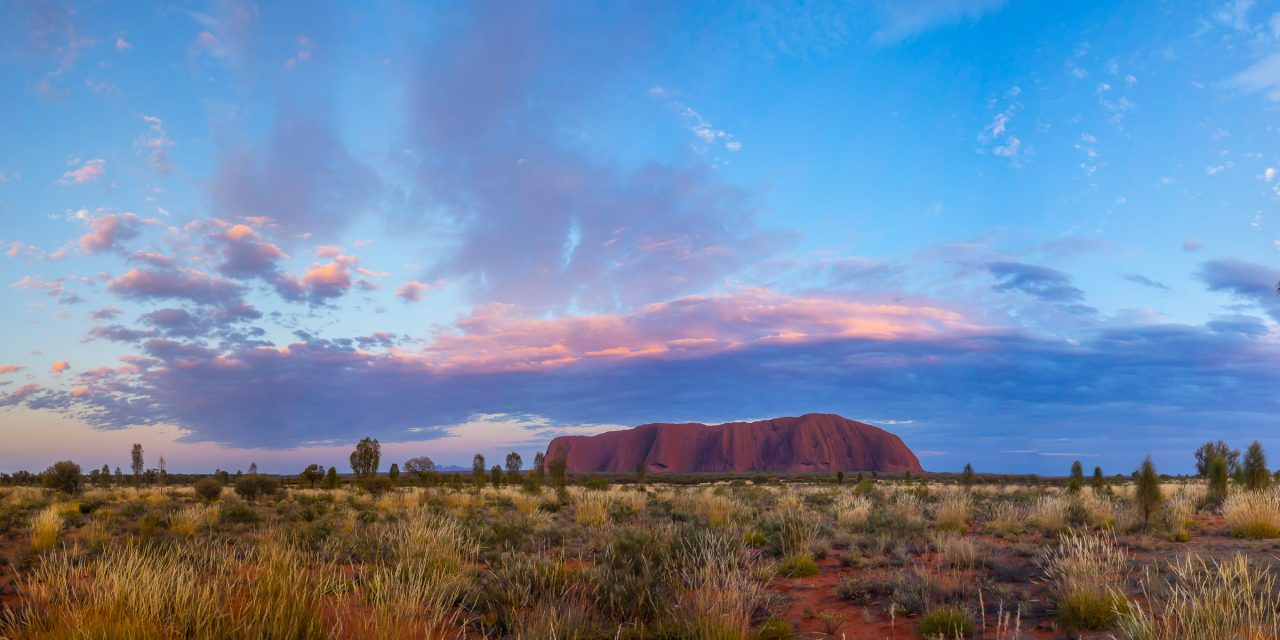 Du « Walou » dans le Red Center Australien