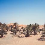 Que faire à Merzouga : 10 activités à ne pas manquer