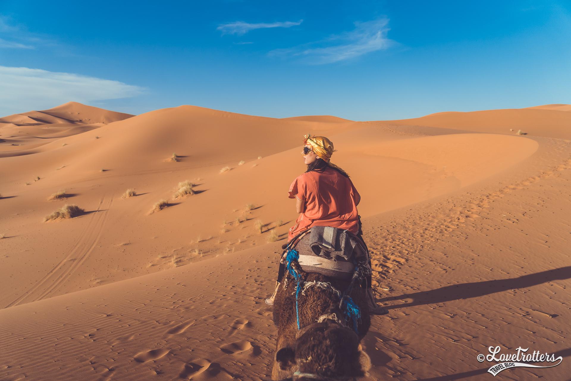Excursion en dromadaire dans le désert du Sahara